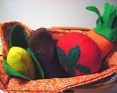 HandMade Organic Catnip felt Vegetables