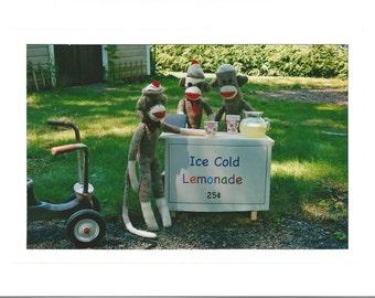 Lemonade Stand Sock Monkey Card
