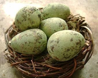 Mockingbird Egg Bead