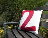 Recycled Sail Throw Pillow - Red Number 2
