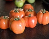 Schimmeig Striped Hollow Heirloom Tomato