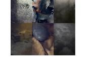 Deep : Photographic Collage