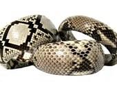 Natural Snakeskin Bangle Bracelet (Large) - by UNEARTHED
