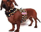 Eco Dog Harness - Orange Candy Corn - MED