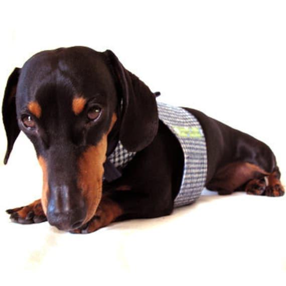 Eco Dog Harness - Navy Blue Check - Small