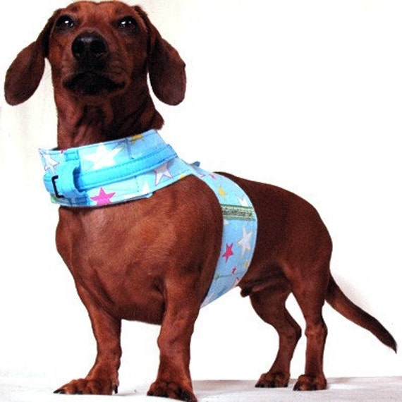 Eco Dog Harness - Renewable Blue Stars Cotton - Large