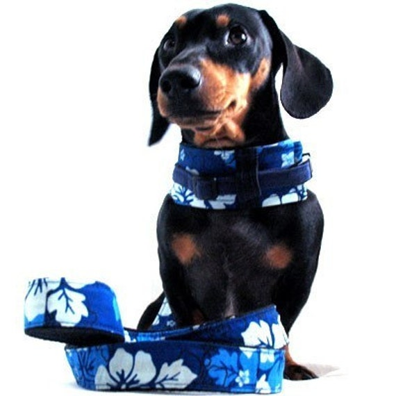 Eco Dog Harness - Renewable Hawaii Blue Cotton - Medium