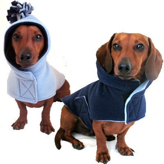 Eco Dog Coat - Navy Sky Blue - LG