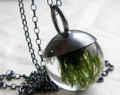 Moss Pendant Small