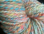 Reserved for SamWestley OOAK skein of SHELL SHOCKED beachy mix multi colored handspun 2 ply Art Yarn 127 yards 4 ounces merino wool