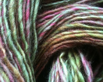 Ooak Skein of GARDEN PARTY ANIMAL Handspun and Hand Dyed Single Ply Worsted Yarn 125 Yards Wool