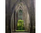 Portland Cathedral Park 16 x 20 Gallery Wrap Canvas
