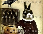 BEAU BUNNY BANDITO HALLOWEEN . ALTERED ART ANTIQUE PHOTO.  Print 5.5 x 5.5 inch. THE DECORATED HOUSE