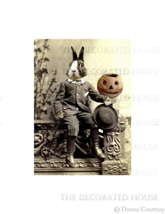 HALLOWEEN Art Print. Beau Bunny Rabbit. Jack O Lantern Pumpkin. Anthropomorphic  Vintage Style  5 x 7 in Handmade by The Decorated House