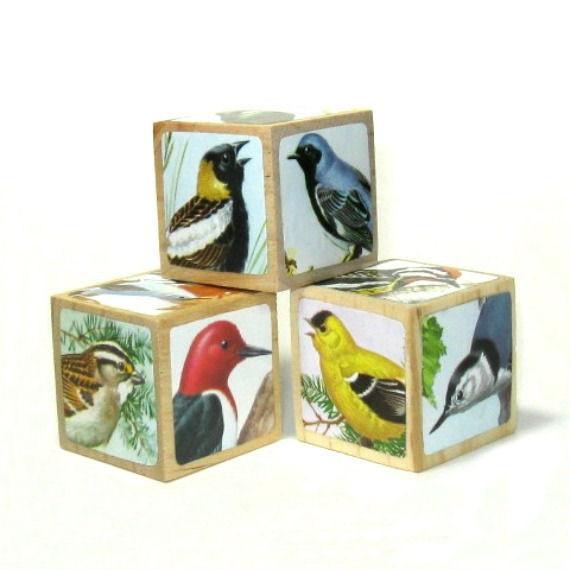 Natural History Bird Art Blocks Home Decor Bird Decoration