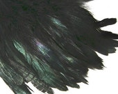 IRRIDESCENT BLACK Rooster Feathers, 4 INCH strip,Top Stitched, great for jewelry, millinery, crafts, costumes caplets, masks and more