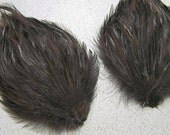 2 DARK BROWN Chocolate Feather Pads