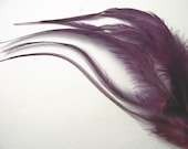 6 BERRY Hair Feathers, Thick Feather Hair Extension, 7 to 11 Inches Long