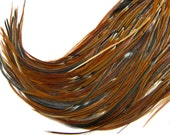 "10 Feather Hair Extensions, SKINNY 8"" to 10"" RARE Barred Furnace Rooster Feather Extensions"
