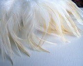 Bleached Badger Rooster Feathers, Top Stitched, 3 Inch Strip