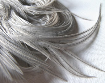 SILVERY GRAY Feathers 3-5 Inches Long, 10 Pcs