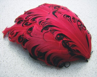 2 RED on BLACK Curly Feather Pads, Nagorie Feathers