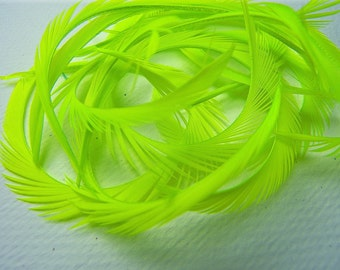 12 Curled NEON GREEN Biot Sword Feathers