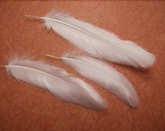 13 WHITE Satinette Goose Feathers
