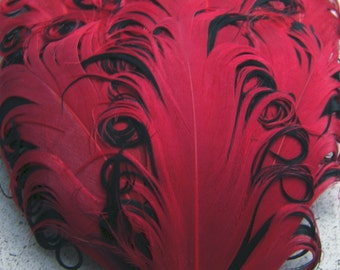 1 RED on BLACK Curly Feather Pad, Nagorie Feathers