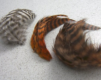 Gizzly Feather Mix, 2 to 4 Inches Long, 15 Pcs