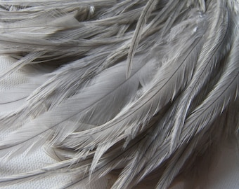 10 Silvery Gray SKINNY Hair Feather Extensions, 5 to 8 Inches Long