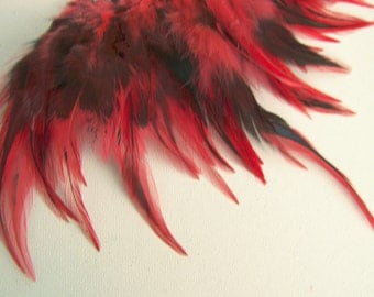 Red Badger Rooster Feathers Top Stitched, 6 INCH Strip