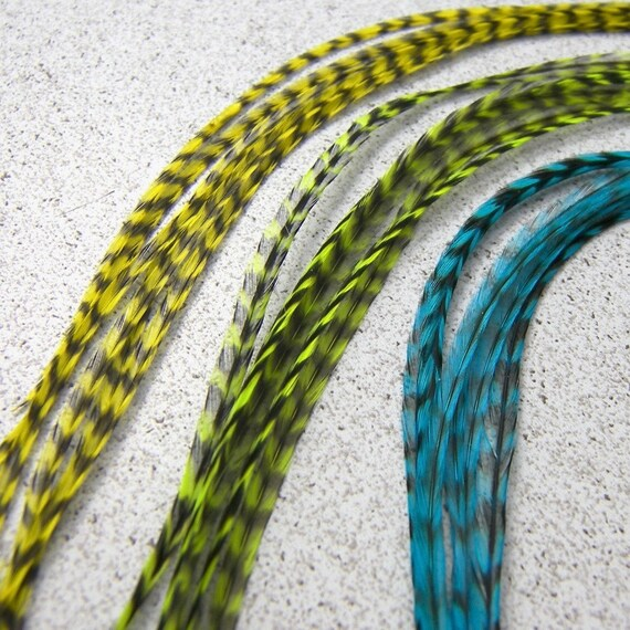 MIX of 18 XLong Feathers, Includes 6 of TURQUOISE, CHARTREUSE and YELLOW BLACK STRIPED, 8 to 12 Inches, Hair Braid Extensions