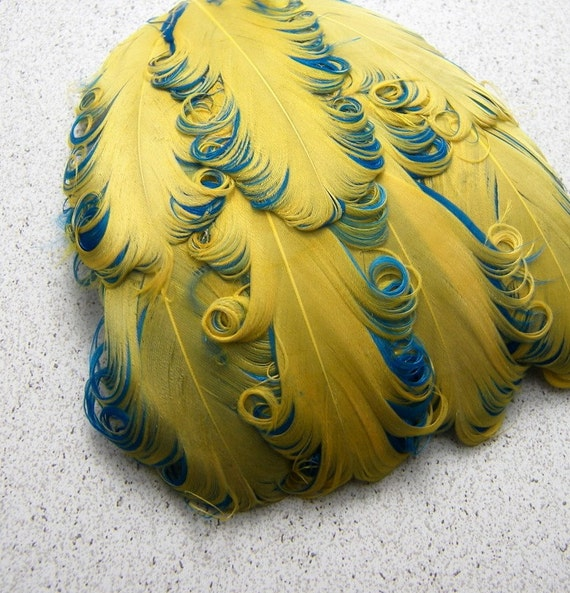 1 YELLOW on TURQUOISE Curly Feather Pad, Nagorie Feathers