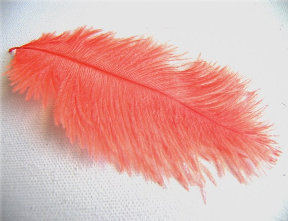 FLAMINGO Ostrich Feathers, SMALL 3 to 4 Inches Long, 2 Pcs
