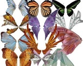 Butterfly Fairy Wings Digital Collage Sheet Blues Pinks Orange Purple Wings Vol 2 Altered Art Scrapbooks Instant Download