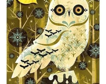 Snowy Owl - 13X19