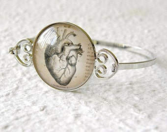 Antique Anatomy Bracelet Bangle - Pick your part - Choose from anatomical heart, brain, spine, skeleton, bones, and more