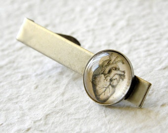 Heart Tie Clip - Anatomical Heart Tie Bar - Vintage Anatomy Great for Valentine's Day or Father's Day