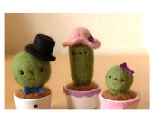 Mr. Mrs. and the tiny baby cactus family porcelain set