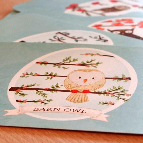 SALE Set of 10 Owl Postcards - 4 x 6 - Snowy Owl, Barn Owl, Screech Owl, Spotted Owl, Great Horned Owl