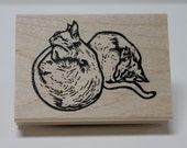 Abyssinian Pair rubber stamp