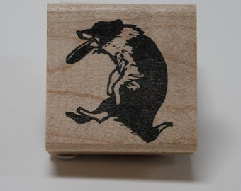 Border Collie Catch rubber stamp