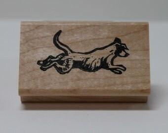 Labrador water dog stamp