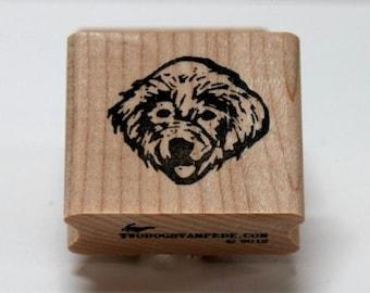 Golden Retrienver Baby Cleo rubber stamp