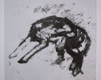 Border Collie Repose - Original Etching
