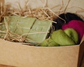 Felt Soap Kit - Aloe and Olive Oil Soap