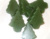 Sassy Soaps N Such Tree Guest Soaps Spruceberry Scented