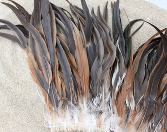 Strung Natural Iridescent Rooster Coque Tails 12-14 inches in height-brown coque feathers, tahitian costume