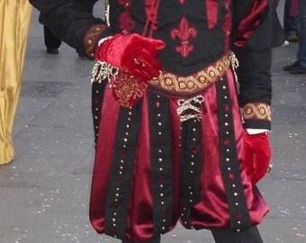 Men's Doublet and Paned Slops, Elizabethan , Tudor, Renaissance, Faire,Pennsic, LARP, Dagorhir, Amtgard, Belegarth,  Custom Garb Costume